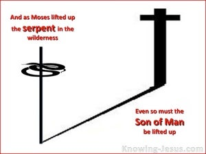 John 3:14 The Son Of Man Must Be Lifted Up white