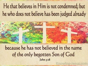 John 3:18 He That Believes Is Not Condemned beige