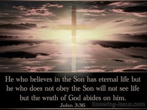 John 3:36 He Who Believes Has Eternal Life black