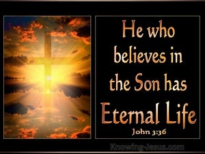 John 3:36 He Who Believes Has Eternal Life gold