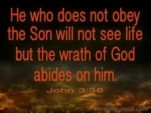 John 3:36 He Who Believes Has Eternal Life red