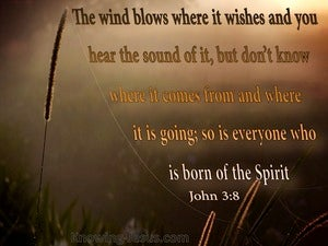 John 3:8 The Wind Blows Where It Wills orange