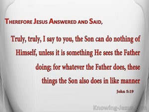 John 5:19 The Son Can Do Nothing Of Himself (red)