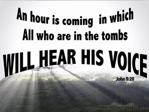 John 5:28 All In The Tombs WIll Hear His Voice black
