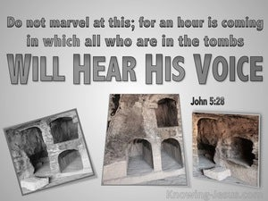 John 5:28 All In The Tombs WIll Hear His Voice grey
