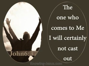 John 6:37 He Who Comes To Me WIl Not Be Cast Out (brown)