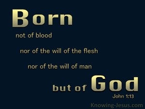 John 1:13 Not Born of Man's Will But Of God (black)