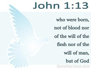 John 1:13 Not Born of Man's Will But Of God (white)