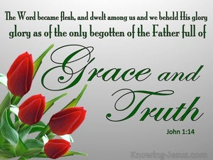 John 1:14 Full Of Grace And Truth (green)