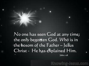 John 1:18:No one has ever seen NAVY