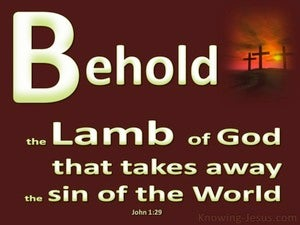 John 1:29 Behold, The Lamb Of God (brown)