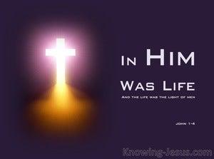 John 1:4 In Him Was Life (purple)