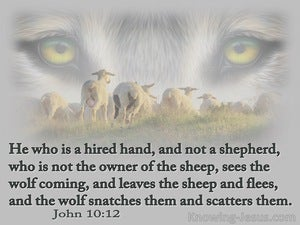 John 10:12 He Who Is A Hired Hand, And Not A Shepherd (sage)