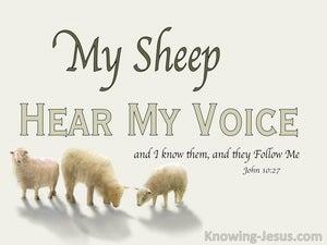 John 10:27 My Sheep Hear My Voice (beige)