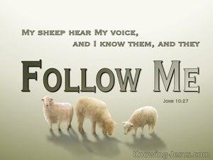 John 10:27 My Sheep Hear My Voice (green)