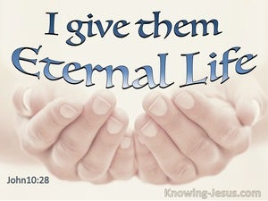 John 10:28  I Give Them Eternal Life (blue)