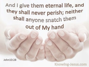 John 10:28 I Give Them Eternal Life And They Shall Not Perish None Shall Snatch Them From My Hand (pink)