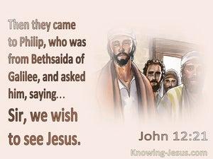 John 12:21 Sir, We Wish To See Jesus (pink)