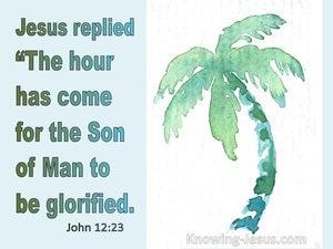 John 12:23 The Hour Has Come (green)