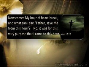 John 12:27 The Hour Of Heartbreak Has Come (windows)06:19