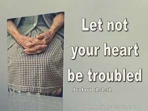 John 14:1 Let Not Your Heart Be Troubled  You Believe On God Believe Also In Me (sage)