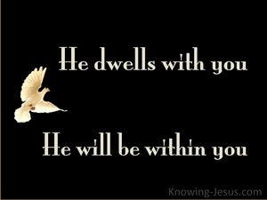 John 14:17 He Will Be In You (black)