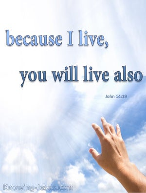 John 14:19 Because I Live You Will Live Also (blue)