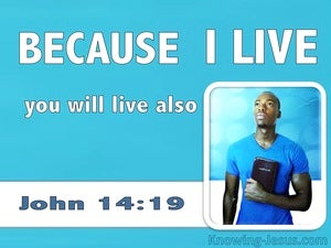 John 14:19 Because I Live You Will Live Also (white)