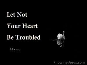 John 14:27 Let Not Your Heart Be Troubled (navy)
