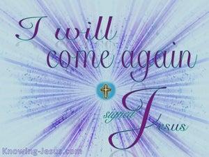 The Spiritual Eye of Faith (devotional) (blue) - John 14:3