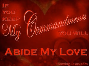 John 15:10 Love Me, Keep My Commandments And Abide In My Love (red)