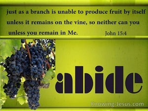 John 15:4 Abide In The Vine (green)