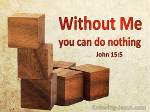 John 15:5 Without Me You Can Do Nothing (windows)01:25