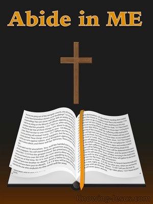 Enlightenment And Illumination (devotional) (black) - John 15:4