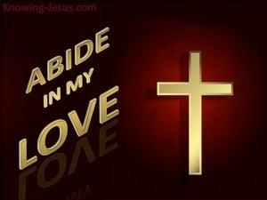 God's Gift of Love (devotional) (maroon) - John 15:9