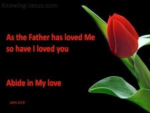 John 15:9 Abide In My Love (red)
