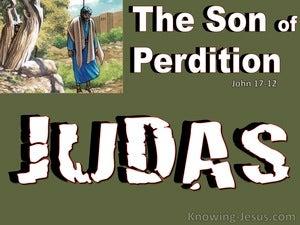 John 17:12 Judas The Son Of Perdition (green)