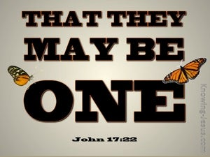 John 17:22 That They May Be One (brown)