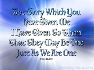 John 17:22 That They May Be One (blue)