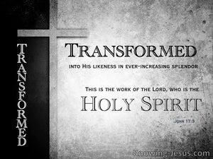 John 17:3  Needful Preparation (devotional) (gray) : 2 Corinthians 3:18