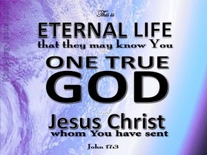 John 17:3 This Is Eternal Life (purple)