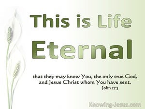 John 17:7 This Is Eternal Life (green)