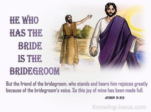 John 3:29 He Who Has The Bride Is The Bridegroom (pink)