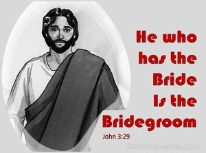 John 3:29 He Who Has The Bride Is The Bridegroom (red)