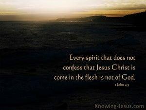 1 John 4:3 The Humanity of Christ (devotional)