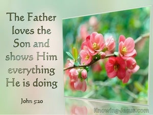 John 5:20 The Father Loves The Son And Shows Him Everything (windows)01:14