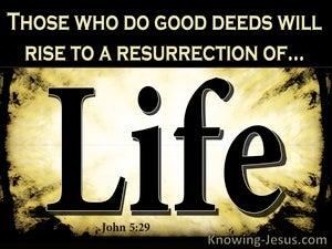 John 5:29 Life or Judgement (black)