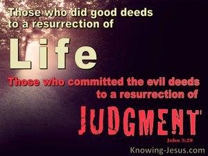 John 5:29 Life or Judgement (red)