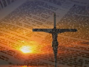 John 5:39 The Scriptures Testify About Me (orange)