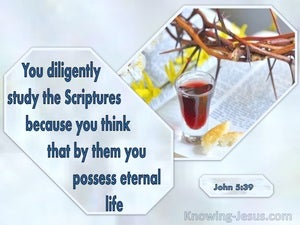 John 5:39 You Diligently Study The Scriptures (windows)01:08